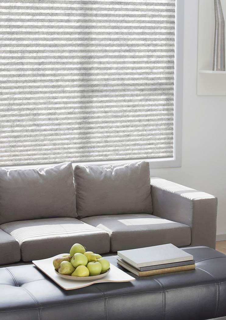 Wohnzimmer mit Plissee grau